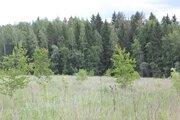 """Прилесной земельный участок, граничит с заказником """"Таруса"""" - Фото 3"""