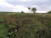 Бюджетный вариант земельного участка в д.Трошково Егорьевское шоссе. - Фото 3