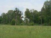Продается полуостров 41 га, на реке Медведица - Фото 3