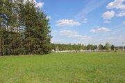 140 сот в СНТ Мишкин лес - дер.Лисицыно - 90 км Щелковское шоссе - Фото 1