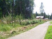 Киевское ш. 20 км от МКАД, участок 15 сот, Новая Москва, Первомайское - Фото 3
