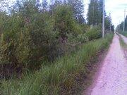 Продам земельный участок 12 соток в Талдомском районе, д. Бельское, . - Фото 4