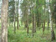 Продажа участка, Луч, Чеховский район - Фото 1