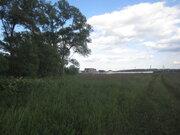 Земельный участок на берегу реки Ока в деревне Лужки - Фото 5