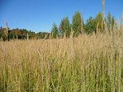 Земельный участок 6 соток в Дуброво в 65 километрах от Москвы. - Фото 1