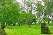 Участок 50 соток вблизи заповедника и реки - Фото 2