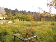 Сказочный сосновый лес и великолепное озеро, участок 8 соток, 50 км. - Фото 2