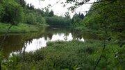 Шикарный лесной участок в пос. от Мин. Обороны. Тихое, красивое место. - Фото 1