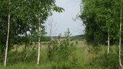 Участок у леса Новорижское ш. 40 км - Фото 4