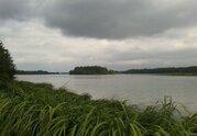 Первая линия р.Волга, участок 340 сот, ИЖС, лес - Фото 3