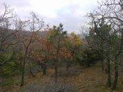 Участок 8 сот. в 12 км от г. Анапа (п. Сукко) - Фото 4