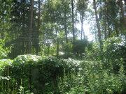 Продаю лесной уч-к 12 сот. в п.Ильинский, ПМЖ, ИЖС, центр. коммуникац. - Фото 2