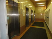 Двухкомнатная квартира на Коломяжском в новом доме, Купить квартиру в Санкт-Петербурге по недорогой цене, ID объекта - 319313783 - Фото 3