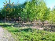 Продается земельный участок в заповеднике Барсуки. - Фото 3
