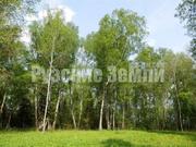 Живописный участок у леса и Рузского водохранилища - Фото 2