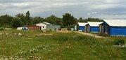Кролиководческая ферма в западном Подмосковье - Фото 2