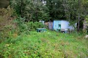Чудесный участок у края леса в СНТ Цирк - Фото 4