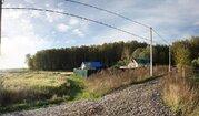 Участок 20 соток в лесу д. Репниково, Чеховский район. - Фото 2