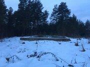 П.Горка лесной участок у леса на окраине деревни, свет, вода - Фото 4