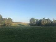 Участок 15 соток, ИЖС, в окружении леса, д. Поспелиха, Чехов - Фото 4