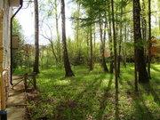 Дом в г. Чехов с центральными коммуникациями на 34 сотках с лесом - Фото 4