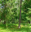 40 гектаров. Волоколамский район. Кругом лес. - Фото 1