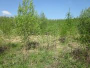 Земельный участок 95 км от МКАД Серпуховский р-н - Фото 1