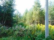 15 сот - ИЖС - д.Дубки - 65 км Щёлковское шоссе - Фото 3
