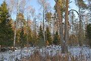 Продаётся земельный участок 15 соток д.Новая Слобода, Щёлковский район - Фото 4