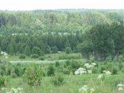 40 гектаров. Волоколамский район. Кругом лес. - Фото 5
