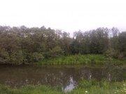 13 гектар кфх в Василево, Переславский район - Фото 4