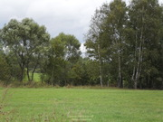 Участок, Ярославское ш, 35 км от МКАД, Цернское д, д.Цернское. .