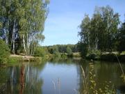 Дача на берегу пруда в Чеховском районе, СНТ - Фото 3