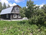 Дачи в Тверской области
