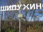 Дом 40 м2 на участке 15 соток в д. Шипухино Кимрского р-на - Фото 2