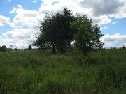 Петровское д, Серпуховской район 55 км от МКАД. - Фото 2