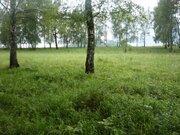 Алтай , берег Катуни, элитный участок Зубы Дракона - Фото 4
