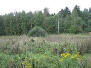 Земельный участок 10 соток в Мошницах - Фото 4