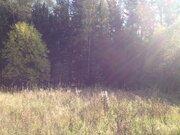 Земельный участок в д. Таширово - Фото 1