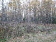 Земельный участок 12 соток 45 км.от МКАД - Фото 1