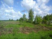 Продается участок 60 соток лпх в д.Чекчино Лотошинского района - Фото 4