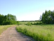 Пять гектаров окружены лесом. Продается земля - Фото 2