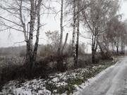 Участок 10 соток д. Ледовские выселки - Фото 2
