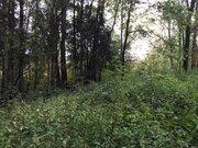 Продается участок, деревня Николо-Черкизово - Фото 2