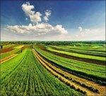 Продам земли сельхоз назначения 8000 га.