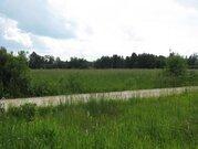 Пять гектаров в Волоколамском районе. Участок 5 гектаров - Фото 1