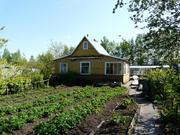 Продается участок в г.Гатчина в сад-ве вниистроммаш (Промзона 1) - Фото 2