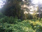 Земельный участок 8 соток ул. Полевая г. Чехов - Фото 3