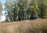 Продаю участок 60 соток в д. Сергеево Чеховский район - Фото 3