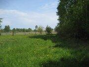 Земельный участок для лпх 50 соток в д. Кошелево - Фото 3
